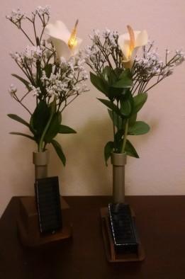 Flaming Lily V2 & V3